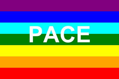 pace rainbow flag